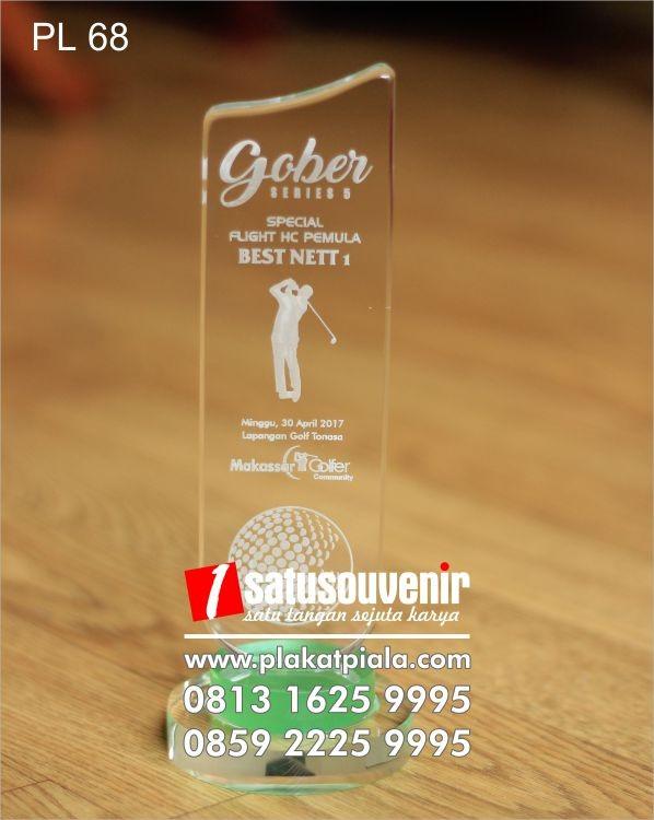 Plakat Laser Grafir Golf Gober Special Flight