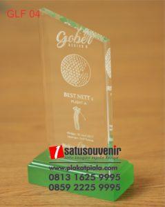 Trophy Golf Akrilik Gober Series Best Net1